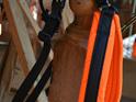 1/2 Back, Canicross, Running  Harness