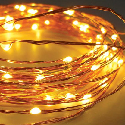 10m 100 LED  Copper Wire Battery Seed Fairy Lights - Warm White