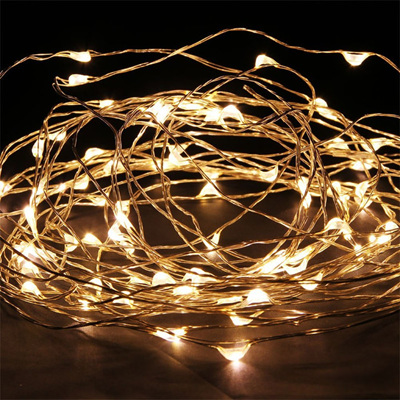 10m 100 LED  Copper/Sliver Wire Battery Seed Fairy Lights - Warm White
