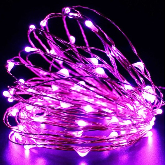 Sliver Wire Battery Seed Fairy Lights