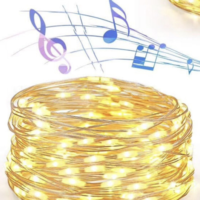 10m 100LEDs USB Music Activated Music Copper Wire Seed Fairy Lights - Warm White