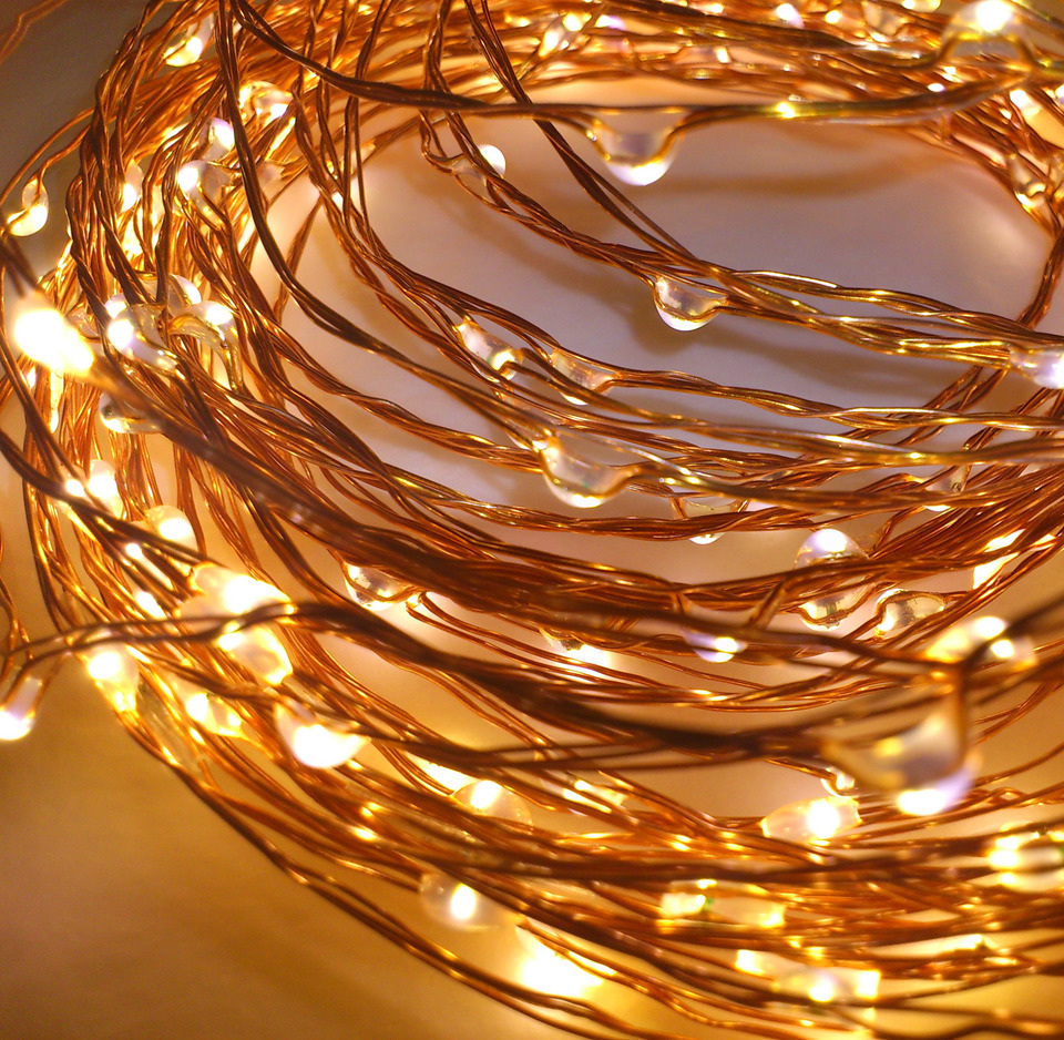 10m Plug In Copper Wire Seed Fairy Lights Warm White