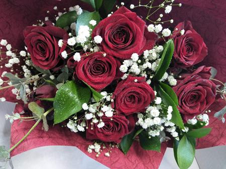 12 x Roses