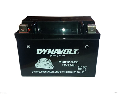 12V 12AH Dynavolt Battery