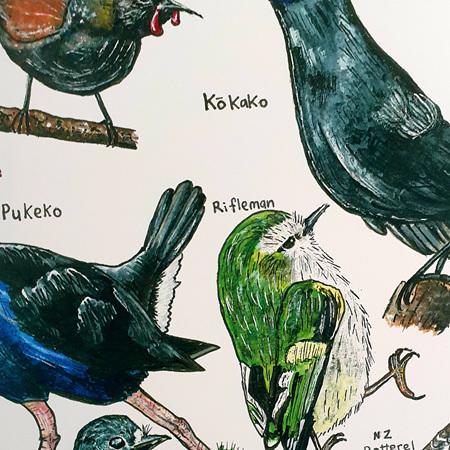 18 Native NZ Birds A4 Print