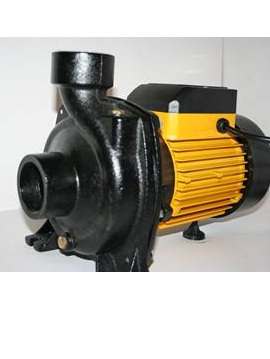 2 hp transfer pump