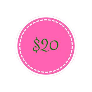 $20 voucher