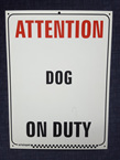 Attention Dog on Duty