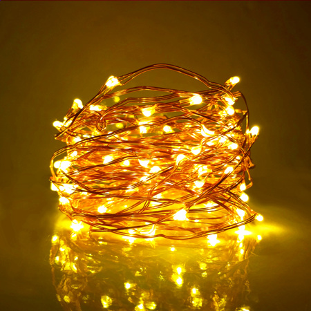 20m Plug-in Copper Wire Seed Fairy Lights with Remote Control  - Warm White
