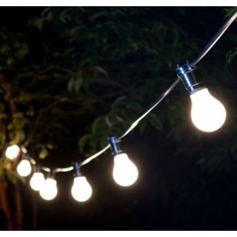 25m Festoon Lights