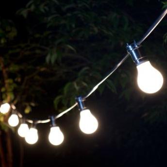 25m Festoon Lights