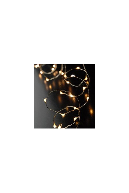 2m 20LED Copper Wire Seed Fairy Lights - Warm White - Party Lights Company