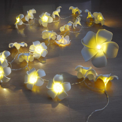 Battery Operated Fairy Lights Party Lights Company