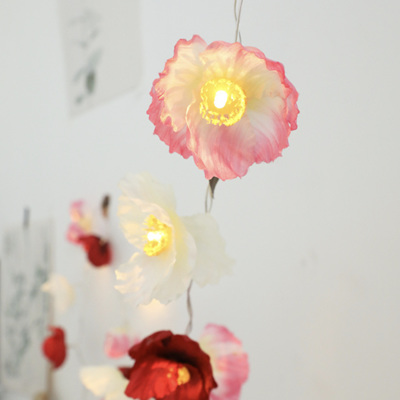 3m USB Peony Flower String Fairy Lights - Warm White