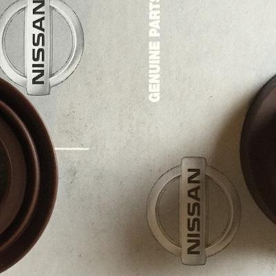 Datsun 1200 B110 Idler Bushes