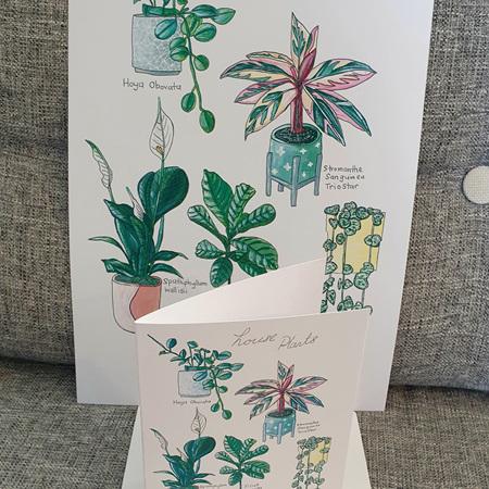 5 Indoor Plants A4 Print
