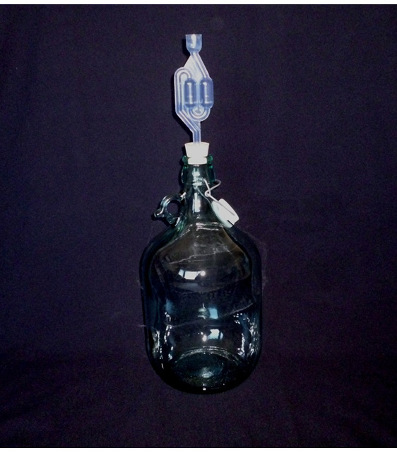 5 litre carboy with bung and airlock
