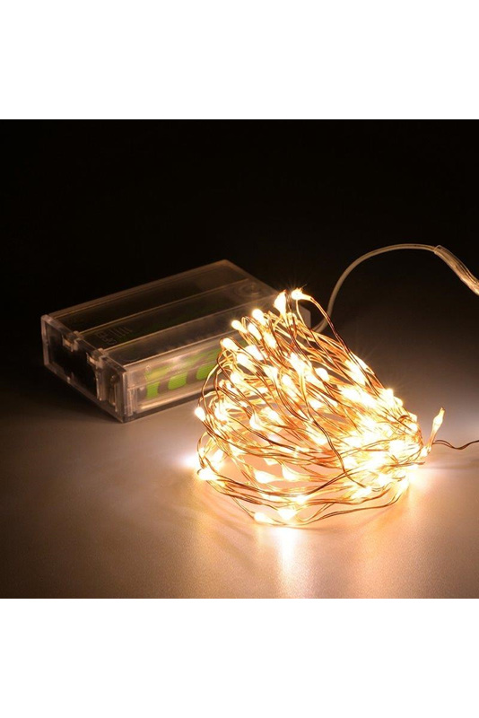 5m Peg Lights Copper Or Silver Wire Battery Seed Fairy