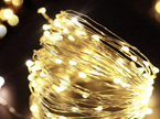 5m Peg Lights  Silver Wire Battery Seed Fairy Lights - Warm White or Cool White