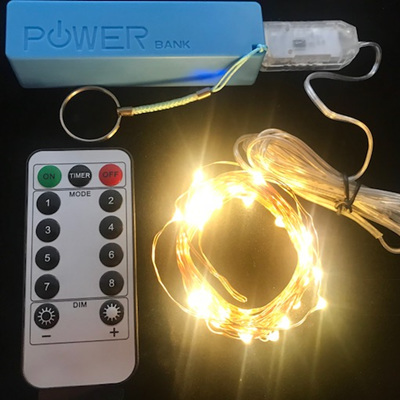 5m USB Plug Wire Seed Fairy Lights With Remote Control And Power Bank