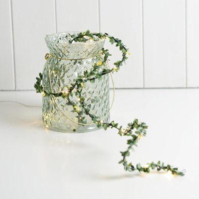5m USB Spring Green Leaf Silver Wire Seed Fairy Lights - Warm White