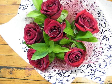 6 x Roses