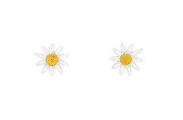 9mm Daisy Stud Earrings