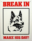 Break In - German Shepherd