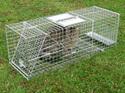 Professional Cat Trip Trap