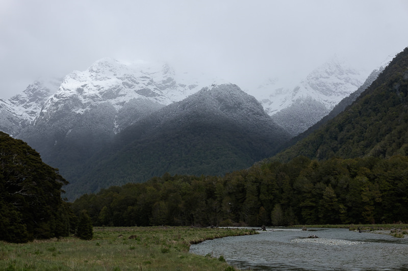 Summer Snow, Milford Road
