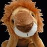 HOSPI - The Hospital Lion