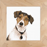 LAN35079A   Jack Russell