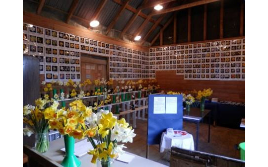 Interior of Daffodil Barn