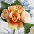 Posy Rose peach 1358