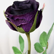 Rose Petite single stem smaller bud1089-1092
