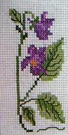 DMCT875K  Violets