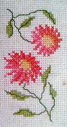 DMCT880K  Pink Flowers
