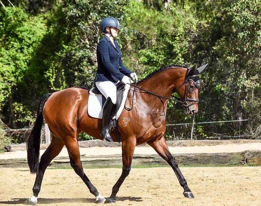 Tayla Greve, Australia - 'such an amazing product' - Chilled Out Horse
