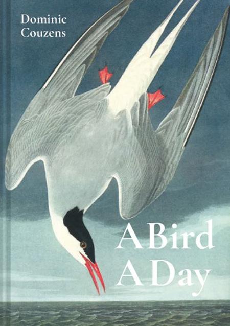 A Bird A Day (pre-order)