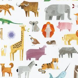 A-Z Animals 189761