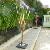 Raupo / Bulrush Sculpture @ 2mtrs