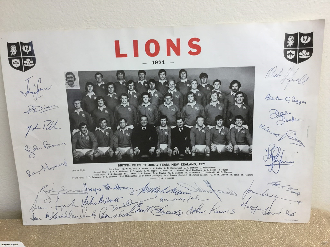 Signed Lions 71 Poster