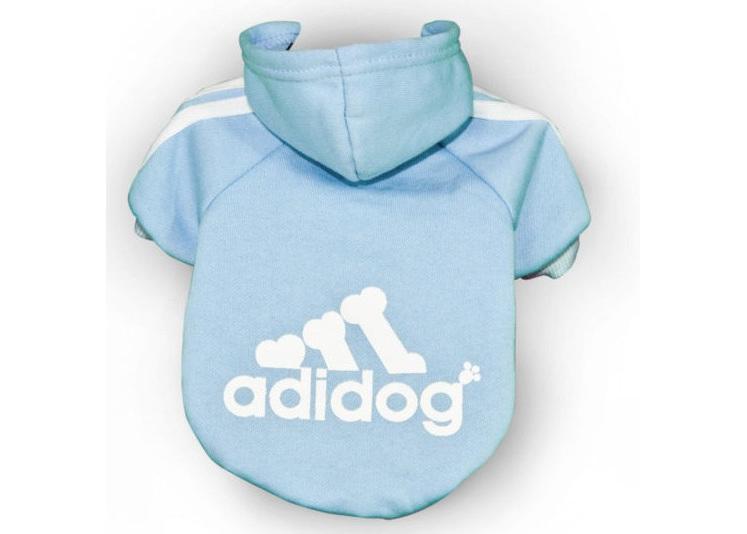 Adidog Hoodie - Sky blue Small Dogs