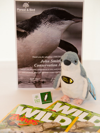 Adopt a Little Blue Penguin - with KCC (child's) Membership