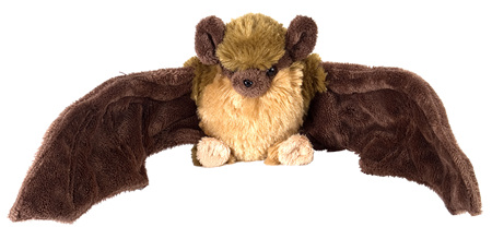 Adopt a pekapeka - New Zealand long-tailed bat
