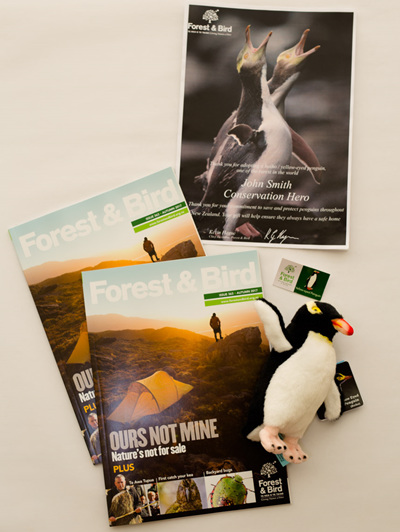 Adopt a Yellow-Eyed Penguin - Membership package