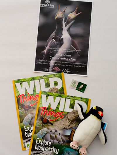 Adopt a Yellow-Eyed Penguin - with KCC (child's) Membership package