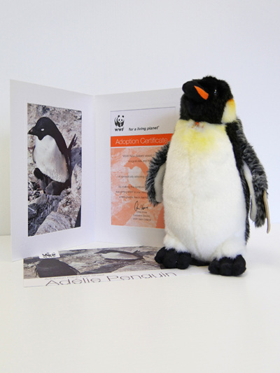 Adopt an Adelie penguin