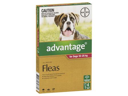 Advantage Dog Large 10-25kg