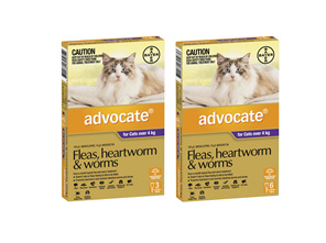 Advocate Cat Large 4kg+